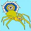 Alone spider